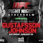 Alexander Gustafsson vs. Anthony Johnson